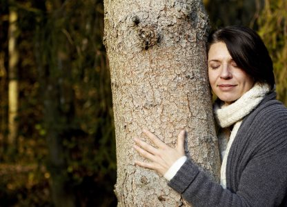 Umarmung des Baums