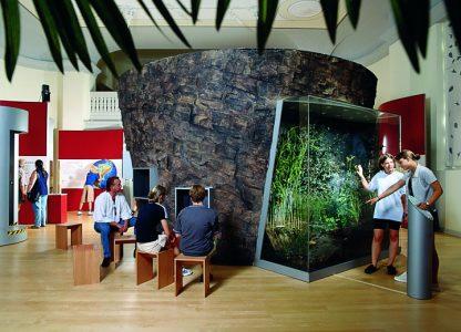 Museumsausstellung