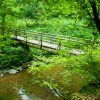 GesundLand Präsentation anläßlich der Naturschutzwarte Tagung des Eifelvereins