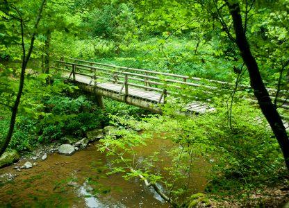 Wegen einer Brückensanierung ist der Lieserpfad zeitweise gesperrt.