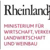 Corona-Virus: Informationen für Unternehmen aus Rheinland-Pfalz